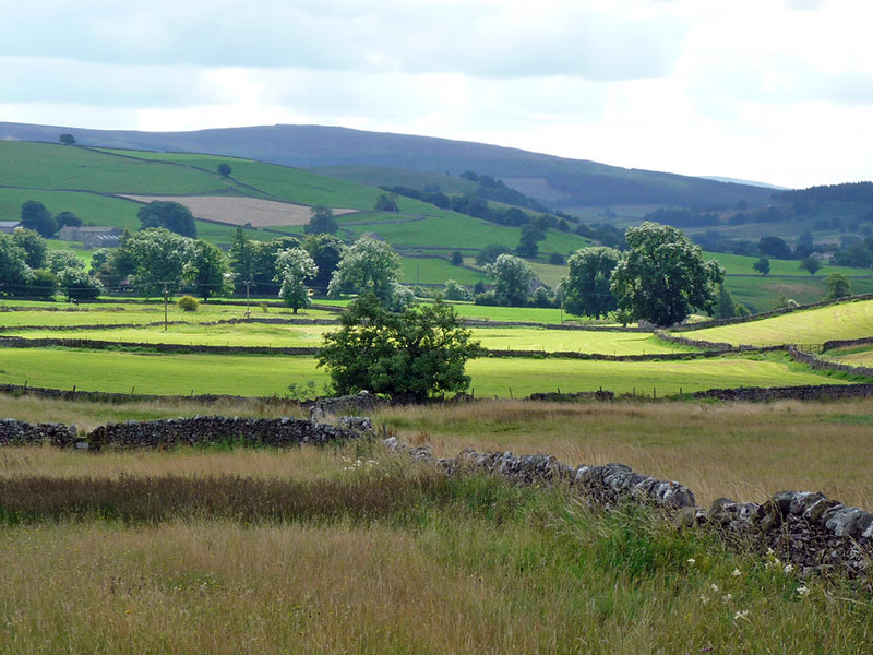 dry-stone-walls-buckden