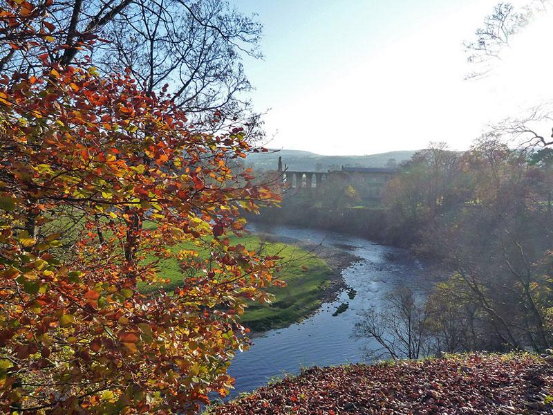 bolton-abbey-autumn-