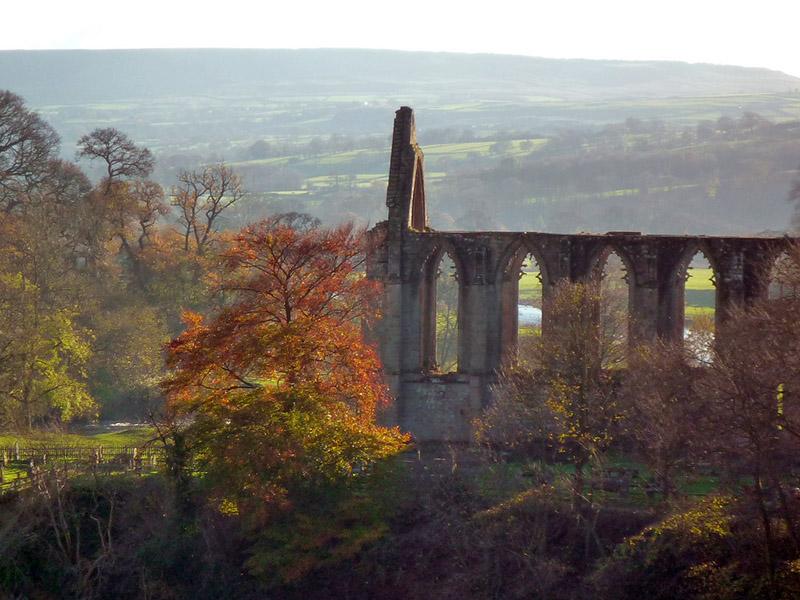 bolton-abbey-autumn-800