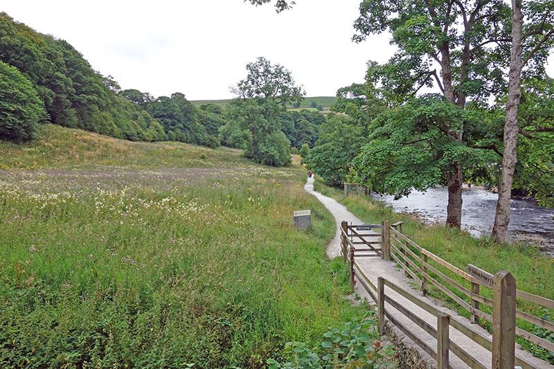 bolton-abbey-meadow-800